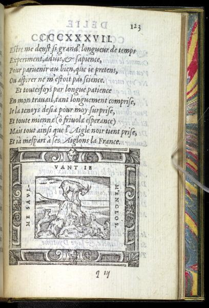 p123. Delie. Le Chamoys et les Chiens