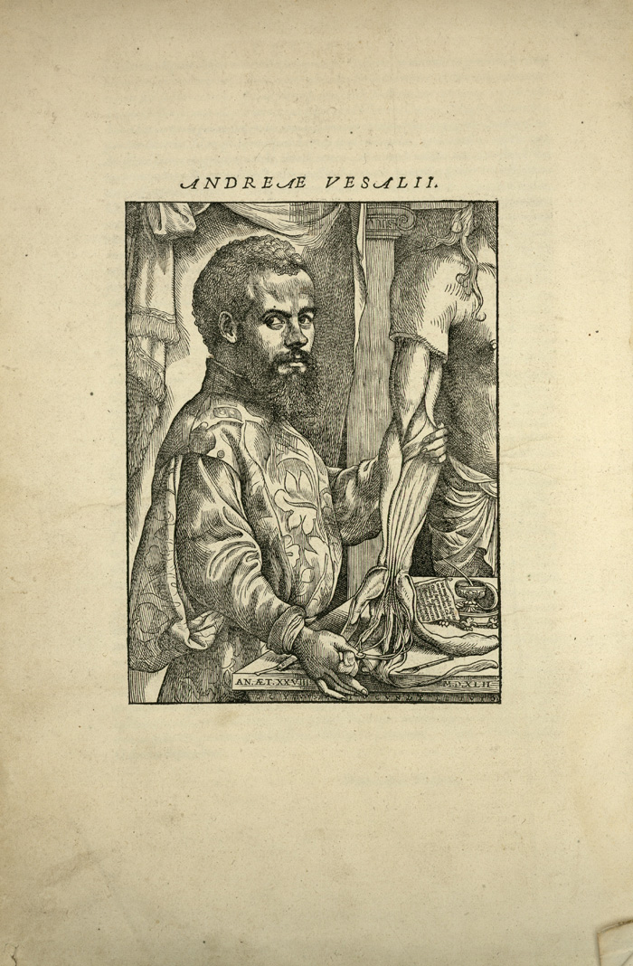 Vesalius. Portrait